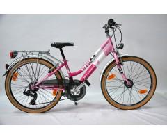 Bicicleta TECNOBIKE 824